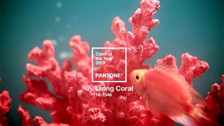 Coral Vivo Pantone