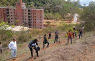 Construtora Riooito promove plantio de mudas de árvores em Itaipava